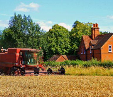 Elvetham Estates Picture