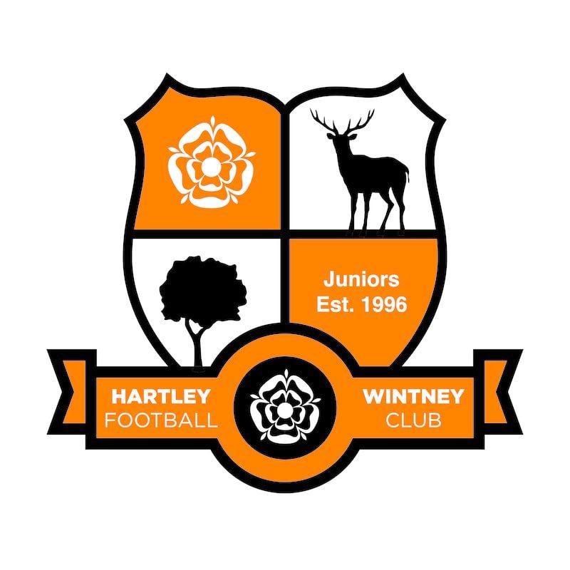 Hartley Witney Junior FC Shield