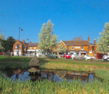 Hatton's Pond